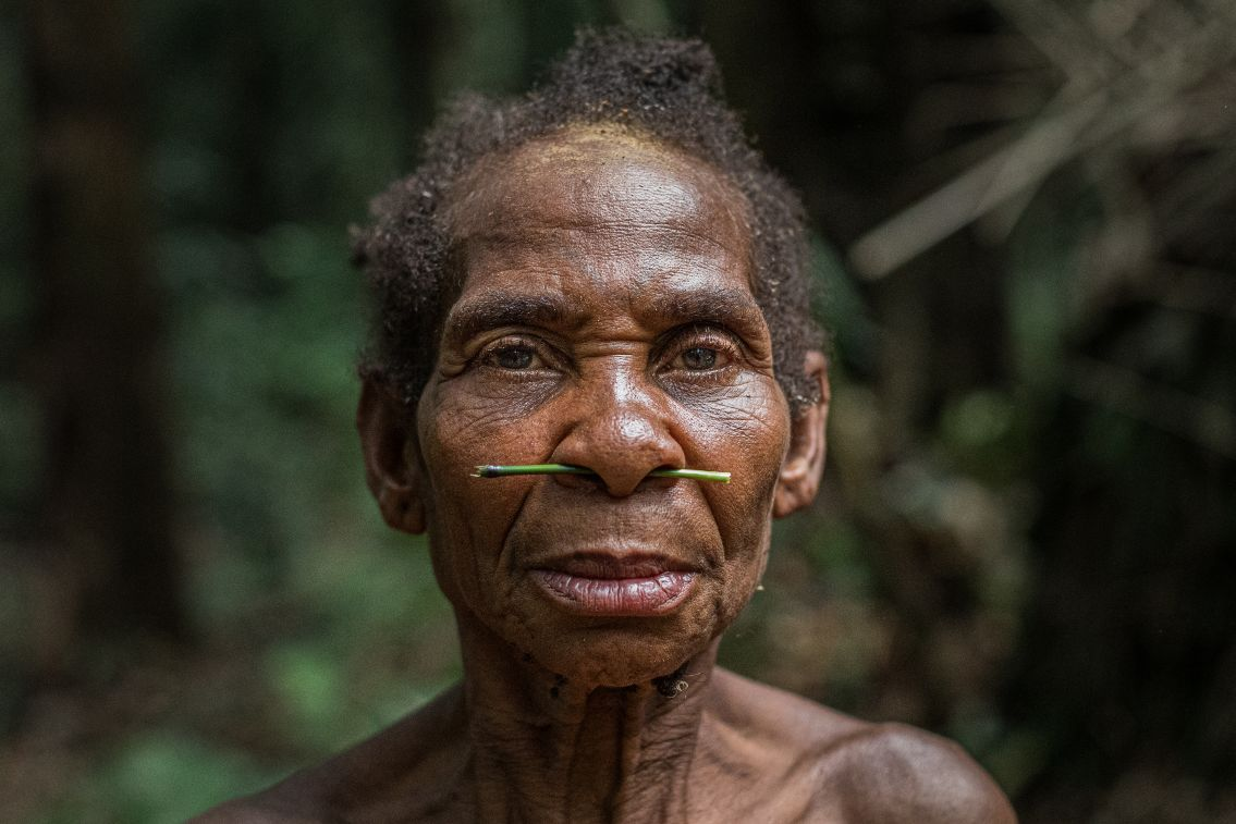 Cameroon: Indigenous Cultures and Forests