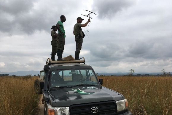 Gabon Tracking