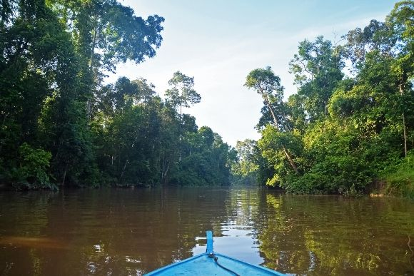 Gabon Waterways